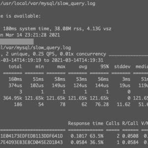 20210314_pt-query-digest_mysql_2